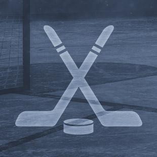 Novinka hokej 02